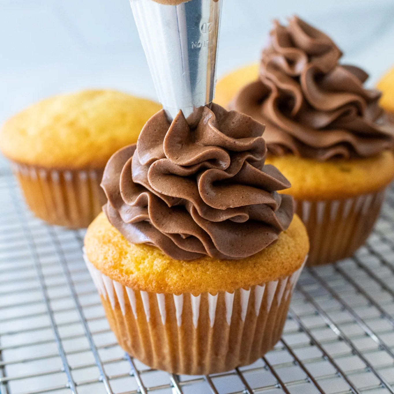 cream being piped onto a cupcake