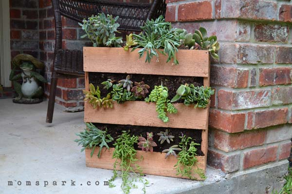 Image Result For How To Start An Herb Garden On Your Balcony