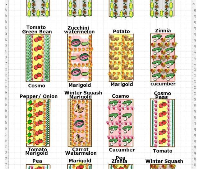 The Multi Bed Garden Plan
