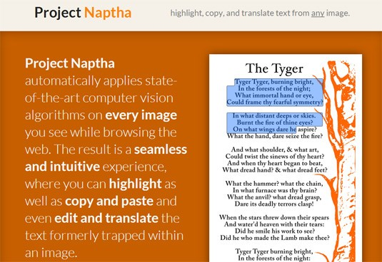 Google Chrome extensions - Project Naptha