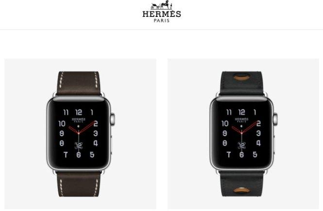 apple watches on Hermes website