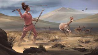 Artistic reconstruction of a vicuña hunt in Wilamaya Patjxa.