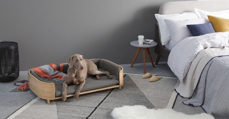 best dog beds 7 of the comfiest picks