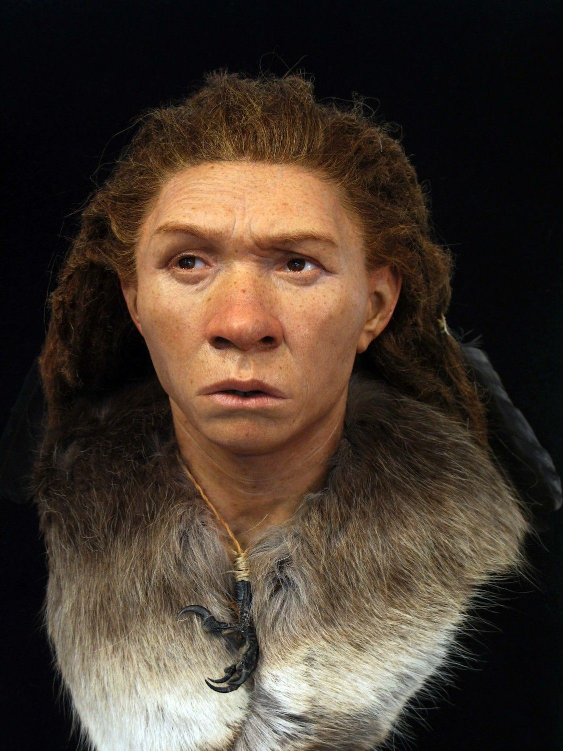 Faces Re Created Of Ancient Europeans Including