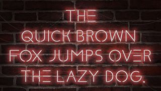 the quick brown fox jumps over the lazy dog in neon lighting