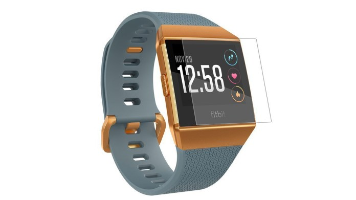 Fitbit Ionic Screen Protector from Vicara