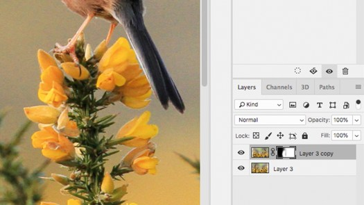 Layer mask on bird image