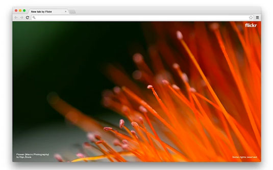 Google Chrome extensions - Flickr Tab