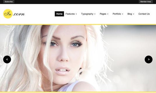 Portfolio WordPress theme - Incorn
