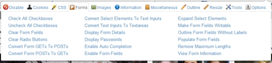 Google Chrome extensions - Web Developer