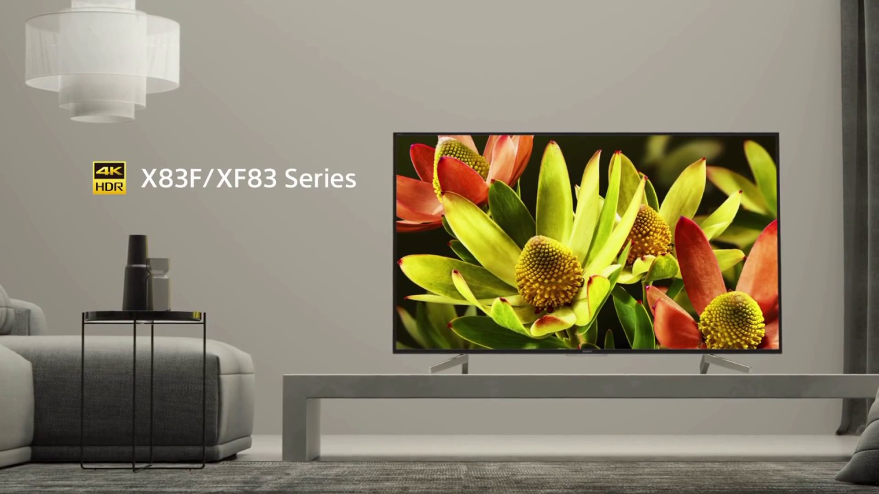 Image result for SONY BRAVIA X830F/XF83