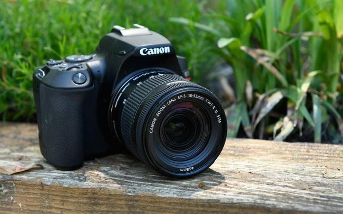 Best DSLR cameras: Canon EOS Rebel SL3