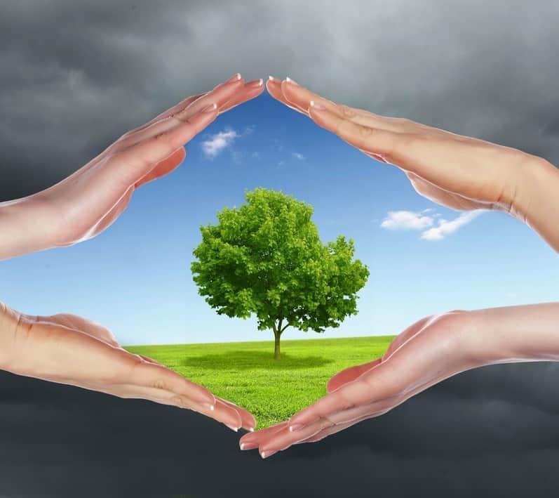 إذاعة عن البيئة موسوعة