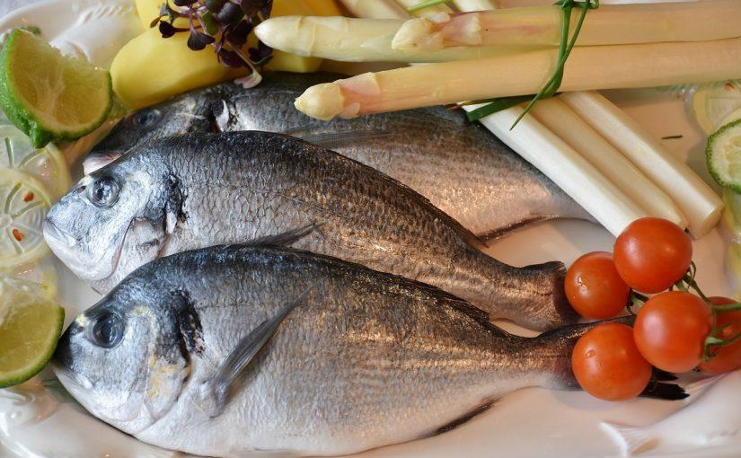 تفسير السمك في المنام للعزباء بالتفصيل موسوعة