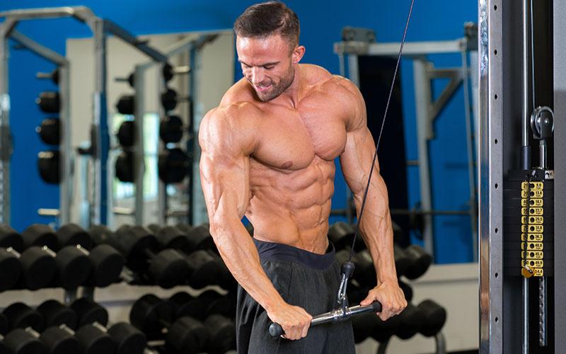12 Week Fat Destroyer Complete Fat Loss Workout Diet Program Muscle Strength