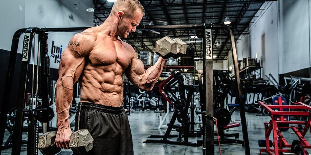 bodybuilding workout的圖片搜尋結果