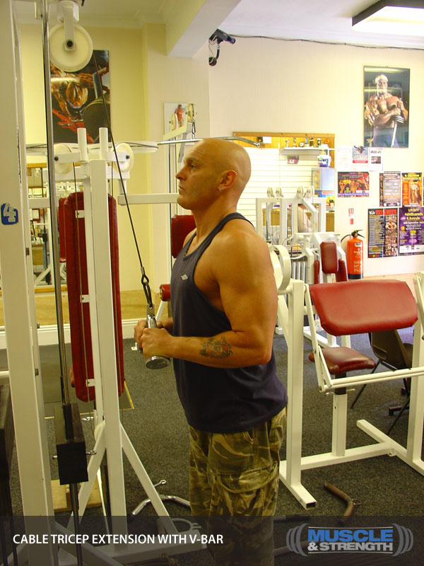 Cable Tricep Extension With V Bar Video Exercise Guide Amp Tips