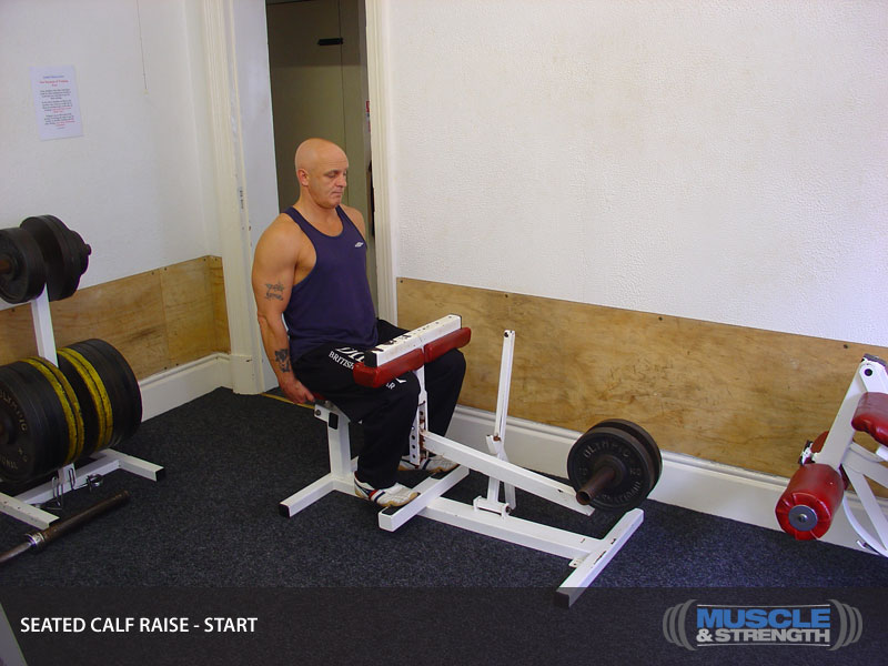 Seated Calf Raise Video Exercise Guide Amp Tips