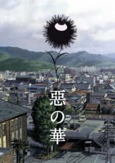 Aku no Hana   BluRay 1080p