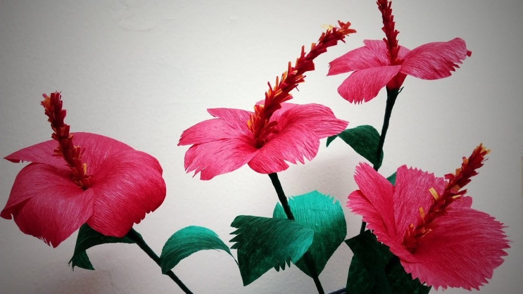 Paper Hibiscus Flowers To Make Kayaflowerco