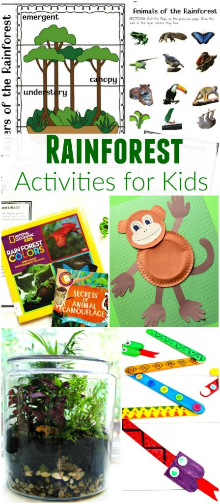 Worksheets Tropical Rainforest Climate