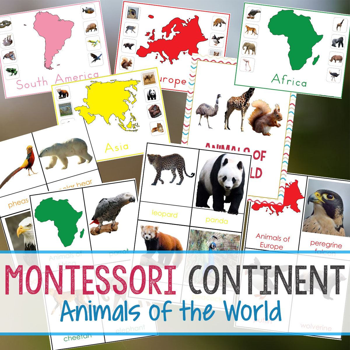 Montessori Animals And Continents Printables And