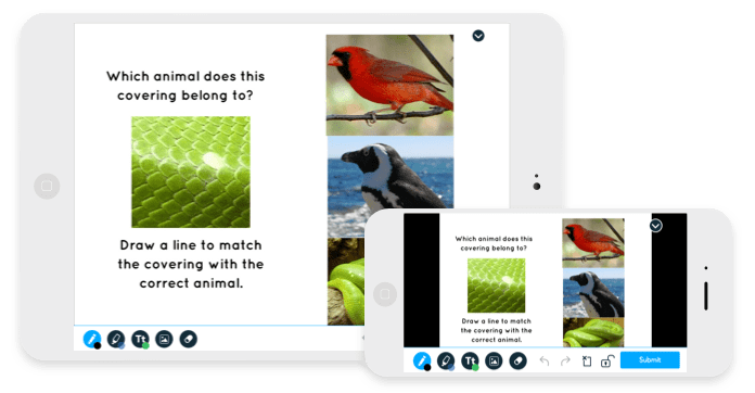 Nearpod Learning platform. Screenshot of a book with animals where kids have to draw a line to match the animal to the picture presented.