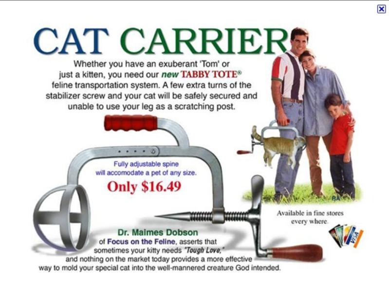 Humor Men S Cat In Carrier Funny Pop Culture Graphic Tee