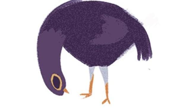 Trash Doves On Your Facebook Why Is This Purple Floppy Dove