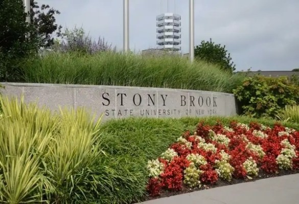 Image result for stony brook university -.edu
