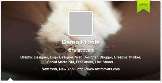 Demo profile