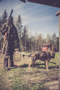 Raiders using dogs to terrorize the refugees (play, Olle Nyman).