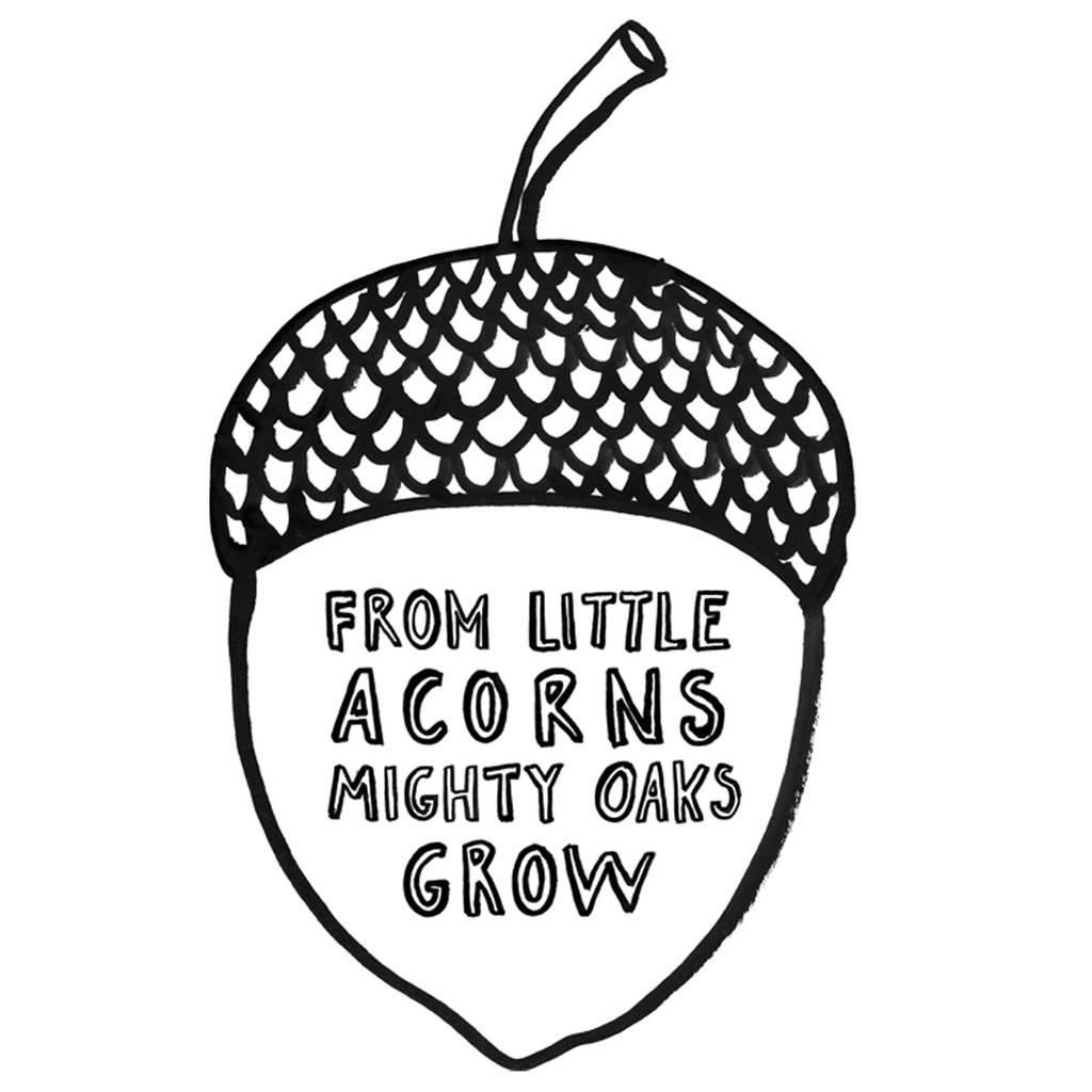 Acorn T Shirt By Karin Kesson Design