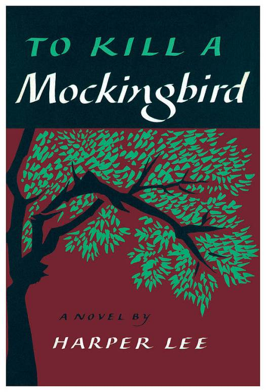 Image result for to kill a mockingbird book