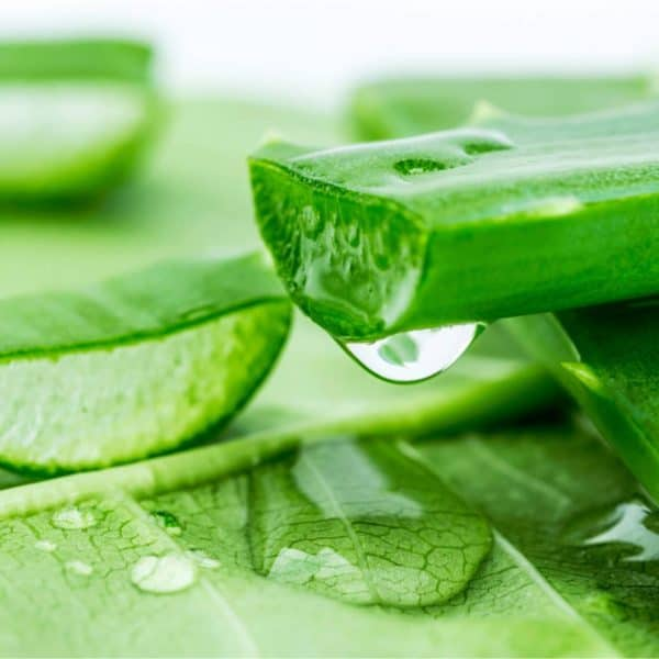 Aloe Vera and tomato juice are effective pimple-fighters when paired together.
