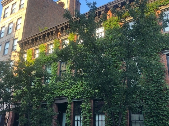 Ivy Building in the West Village