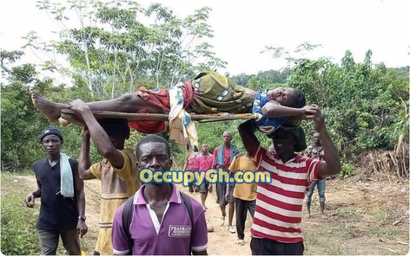 Pregnant Woman Carried Wood Hospital