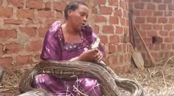 EXPOSED: Woman Caught Breastfeeding A Snake (WATCH) 1