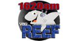WDHP The Reef