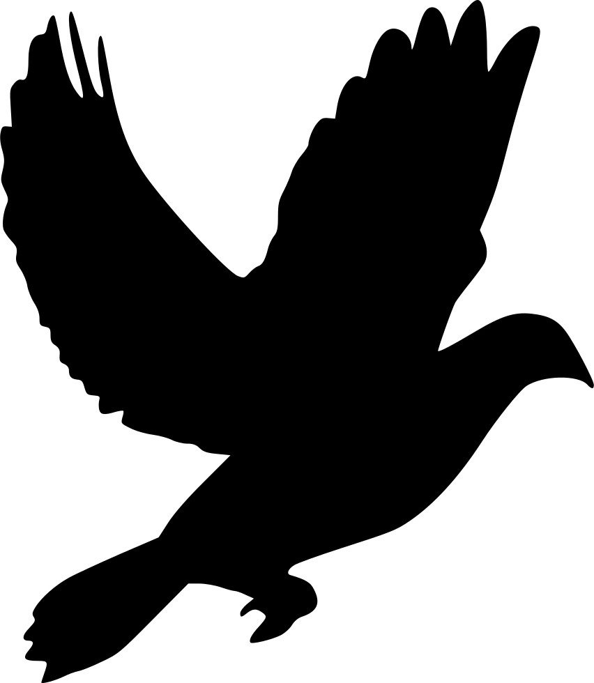 Animal Dove Pigeon Svg Png Icon Free Download 438613