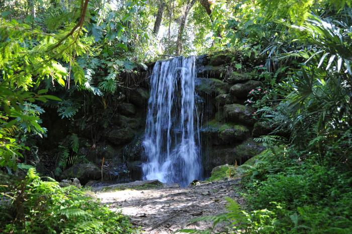 3. Rainbow Springs State Park, Dunnellon, FL