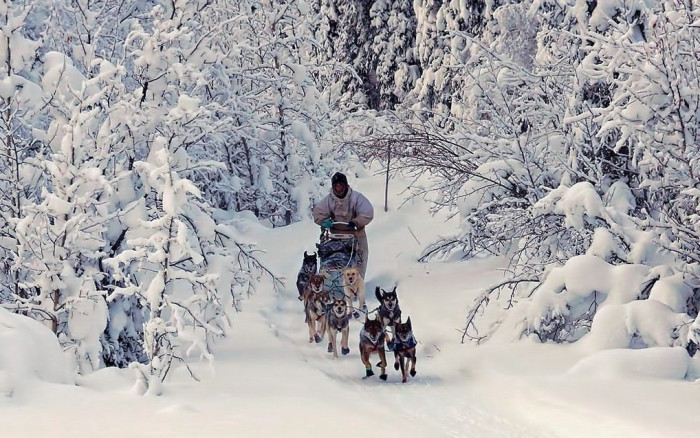 Image result for snow