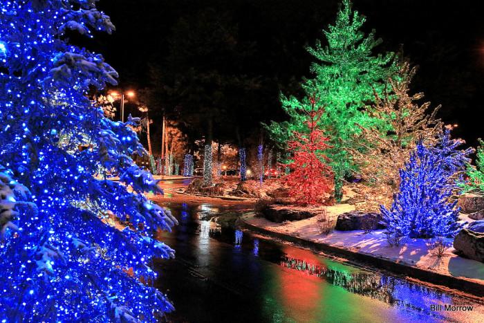 Outdoor Light Displays