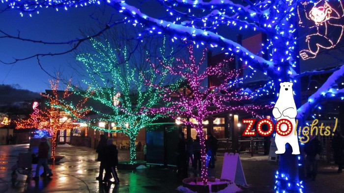 Zoo Lights Slc