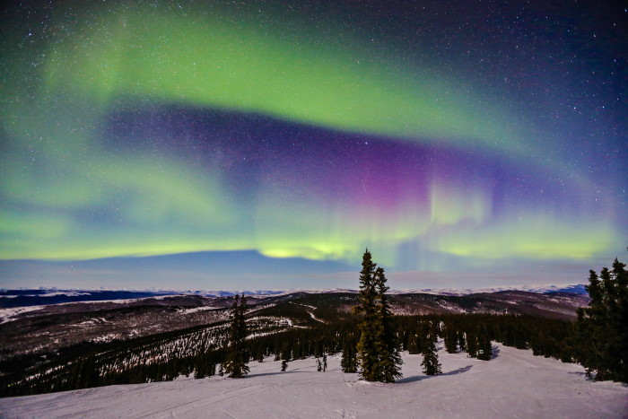 Northern Lights Guns