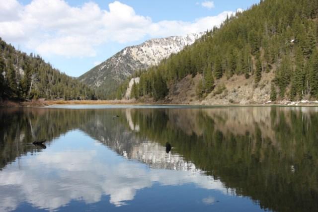Upper Palisades Lake, Swan Valley