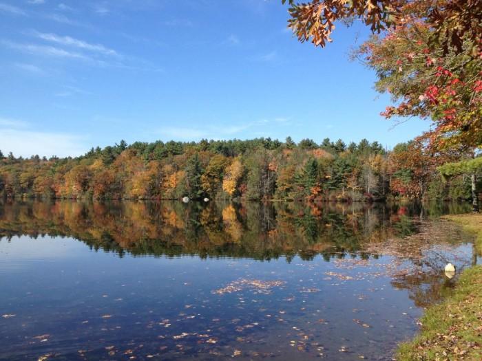13. Burr Pond State Park (Torrington)