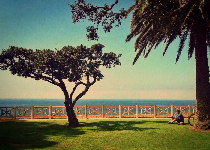 1. Lazy Sundays at the park. Lounging on a blanket of green grass in Santa Monica with the view of the ocean off in the distance.
