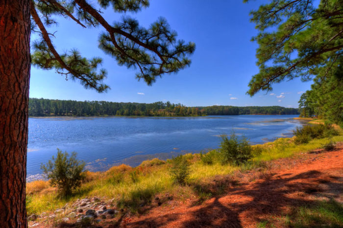 Visit Toledo Bend To See The Bluest Water In Louisiana