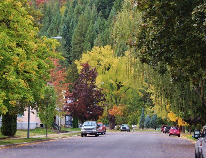 Ketchum Calendar Events Idaho